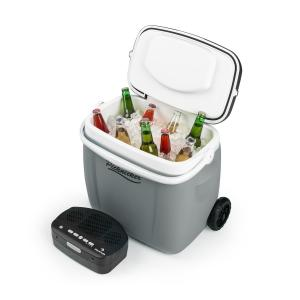 auna Picknicker Trolley Music Cooler 36l Trolley Borsa Frigo Altoparlanti BT grigio