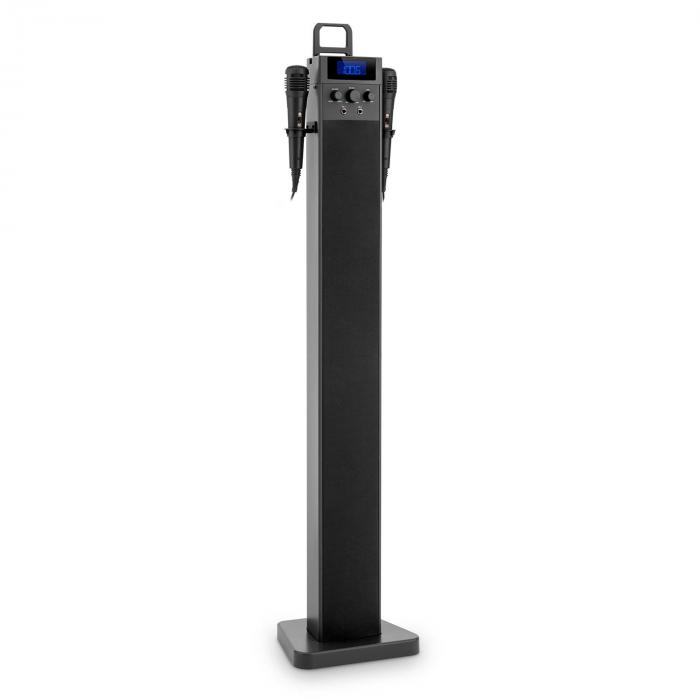 HiTower Enceinte colonne Karaoké Bluetooth FM AUX USB 2 micros -noir