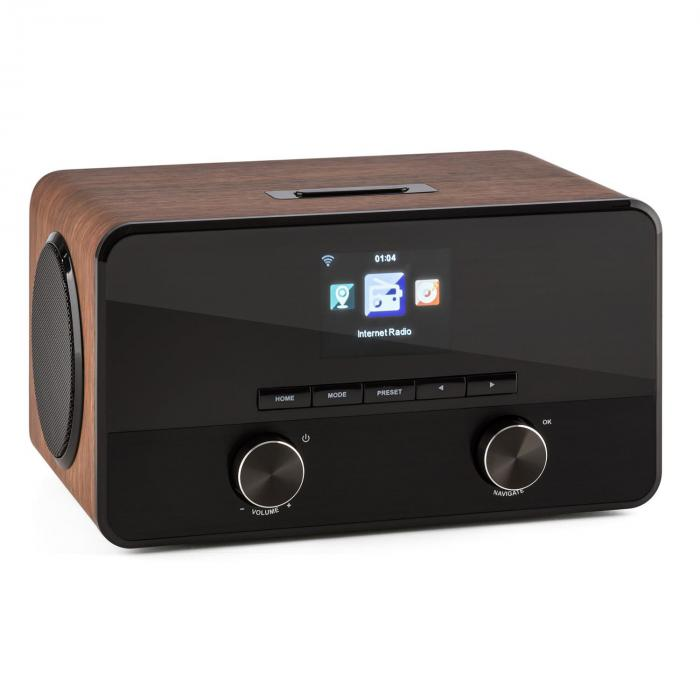 Connect 100 Internet Radio Media Player Bluetooth WLAN USB AUX Line Out