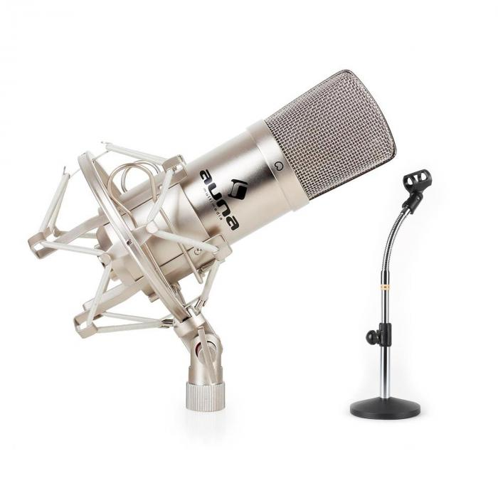 studio microphone set w xlr condenser mic silver mic table. Black Bedroom Furniture Sets. Home Design Ideas